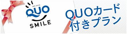 1,000円分QUOカード付きプラン